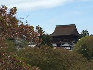 吉野山のお寺をのぞむ。既に葉桜になっています(涙)。