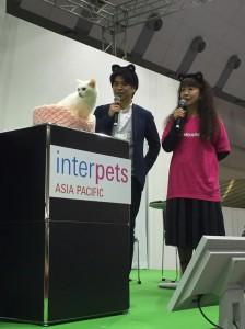 ステージにも猫耳をつけて出演したら、あなごちゃんがそっぽを向いておりまするー(涙)。
