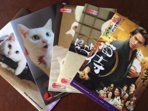 お土産に、「猫侍」クリアファイル・セットをいただきました。うれぴー♡